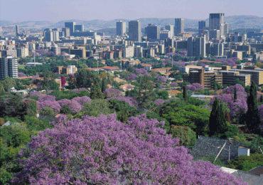 Jacaranda-city-Pretoria
