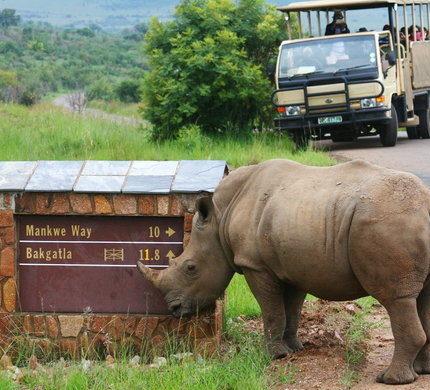 Pilanesburg Natural Reserve